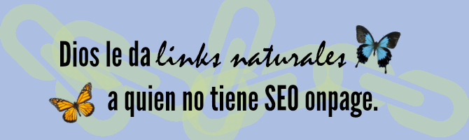 frase de seo on page